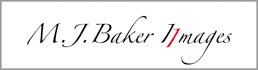 Fine Art Photographic Prints of Michael Baker